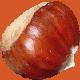 Checastagna